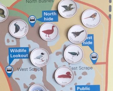 Stickers of animals on a map