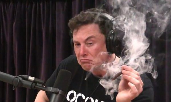 musk smoking a joint